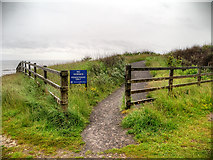 NZ4163 : Path at Whitburn Nature Reserve by David Dixon