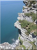 SS7049 : Abseiling on Castle Rock, Wringcliff Bay by Roger Cornfoot
