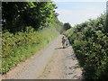 SW7824 : Footpath to Tregasso Farm & Gillan Creek by Dr Duncan Pepper