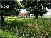 H5774 : Mullaghslin Glebe Townland by Kenneth  Allen