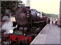 SK0247 : Steam Train at Kingsley and Froghall Station by David Dixon