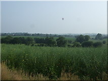 SK0722 : Oilseed rape crop, Newlands by JThomas
