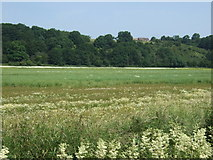 SK2222 : Farmland and woodland, The Rough by JThomas
