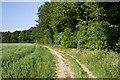 TL1308 : Path near Batchwood by Ian Capper