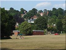 SU9948 : Shalford Park by Alan Hunt