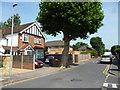 TQ2068 : New Malden: Poplar Grove by Dr Neil Clifton