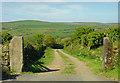 SN0033 : Track near Kilkiffeth, Llanychaer by Dylan Moore
