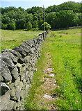 SE0023 : Flag stones on Hebden Royd FP114 by Humphrey Bolton