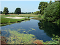 TQ0586 : Pond, Buckinghamshire Golf Club by Robin Webster