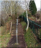 SO6303 : Steps up to a path into Millrough Wood, Lydney by Jaggery