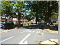 TQ2164 : Ewell:  Chestnut Avenue by Dr Neil Clifton
