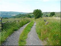 SE0023 : New Lane by Humphrey Bolton