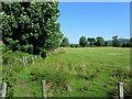 NR8394 : Field beside Drimvore by Chris Heaton