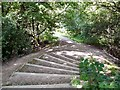SJ9593 : Steps into Gower Hey Woods by Gerald England