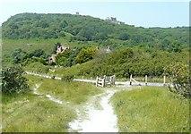 TR3341 : New fencing along the Saxon Shore Way by John Baker