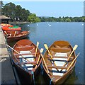 ST1879 : Boats for hire, Roath Park Lake by Robin Drayton