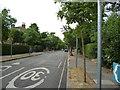 TQ2469 : Merton:  Mostyn Road by Dr Neil Clifton