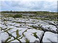 M2300 : Clints and grikes at Poulnabrone by Oliver Dixon