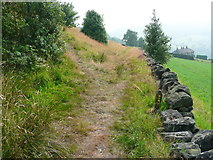 SE0125 : Path junction on Hebden Royd FP67 by Humphrey Bolton