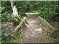 SU8073 : Footbridge over a dry stream bed, Hurst by Robin Stott
