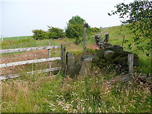 SE0125 : Stile on the informally diverted route of Hebden Royd FP59 by Humphrey Bolton