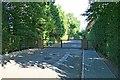TQ1461 : Broomfield Ride by Hugh Craddock