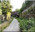 SJ9594 : Stockport Road Bridge by Gerald England