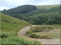 SK1695 : Path and footbridge at the foot of Cranberry Clough by Andrew Hill