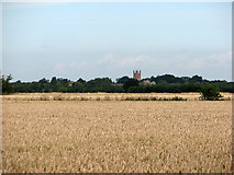 TL4568 : Cottenham Church from Frith Fen Drove by John Sutton