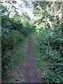 SP7222 : Bernwood Jubilee Way by Philip Jeffrey