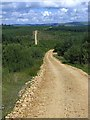 NY7996 : Switchback road through Redesdale Forest by Oliver Dixon