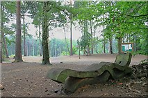 TQ1362 : Sculpted wooden bench on Esher Common by Hugh Craddock