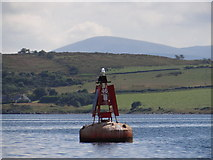 """NR9967 : Port Hand Lateral Navigation Buoy """"No 46"""" by Ian Paterson"""