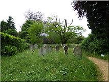 SU1012 : St James, Alderholt: churchyard (4) by Basher Eyre