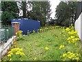 H5467 : Overgrown garden in Beragh village by Kenneth  Allen