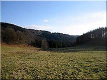 SN7673 : Dry valley below Pendre, Hafod estate by Rudi Winter