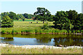 NY3971 : View across the River Esk to parkland at Netherby by Rose and Trev Clough