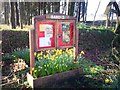SN1306 : Sardis Notice Board by welshbabe