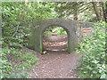 TM4770 : Stone bridge in Dunwich Wood by David Hillas