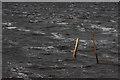 SD9287 : Fencepost, Semer Water by Mick Garratt