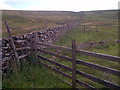 SD9384 : Dry Stone Wall off High Lane by Mick Garratt