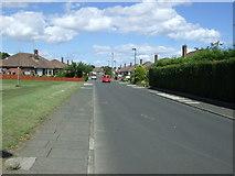 NZ2372 : Birchwood Avenue, Wideopen by JThomas