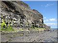 NZ8513 : Wave-cut platform, Sandsend by Pauline E