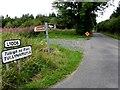 G9927 : L1006, Tullynamoyle by Kenneth  Allen