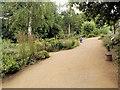 TM0733 : RSPB Wildlife Garden, Flatford by David Dixon