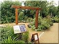 TM0733 : Wildlife Garden at Flatford by David Dixon
