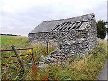 SK1862 : Tumbledown limestone shed near Middleton by Neil Theasby