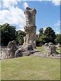 TL8564 : Magna Carta Link, St Edmunds Abbey by David Dixon