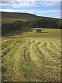 SD8388 : Cut grass crop, lower Widdale (2) by Karl and Ali