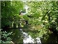 TL7745 : River Stour, Footbridge at Clare by David Dixon